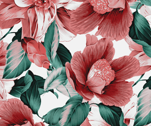 Flowers Wallpaper And Background Image