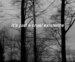 black, quotes, and trees image