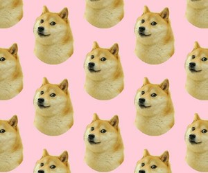 dog, wallpaper, and patternator image