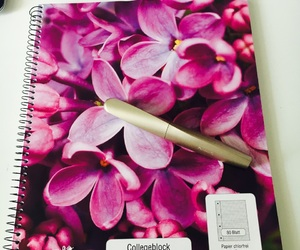 college, exams, and flowers image