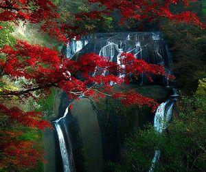 beauty, nature, and waterfall image