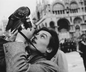 bird, black and white, and Alain Delon image