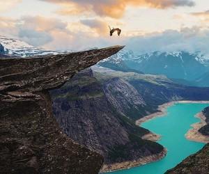 backflip, risk, and sky image