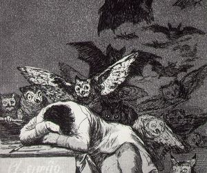 goya, 1799, and plate 43 of los caprichos image