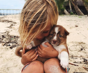 beach, dog, and cute image