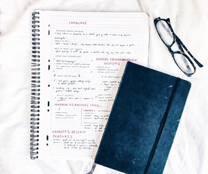 study, note, and studyblr image