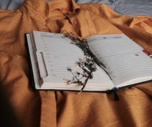 books, peace, and flowers image