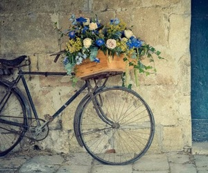 bike, flowers, and photography image