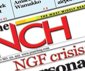 nigerian newspapers today image
