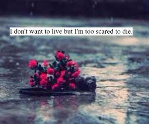 depressed, flowers, and Lyrics image