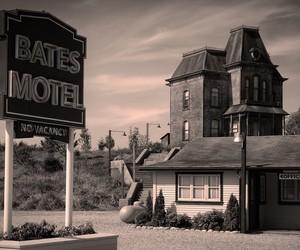 bates motel and vera farmiga image