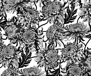 background, black and white, and botanical image