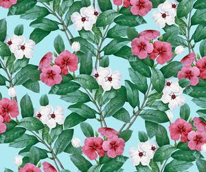 background, botanical, and flora image