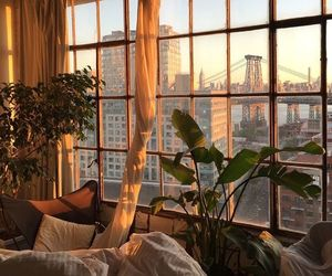 plants, city, and window image