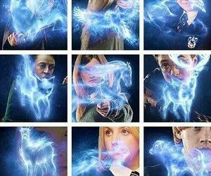 harry potter, patronus, and hermione granger image