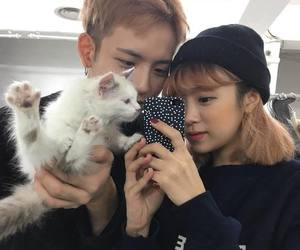 ulzzang, cat, and couple image
