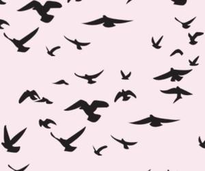 faith and birds image