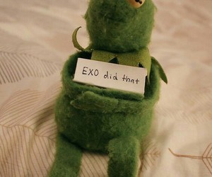 exo, kermit the frog, and kpop meme image