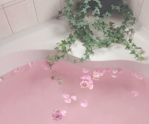 bath, plant, and flowers image