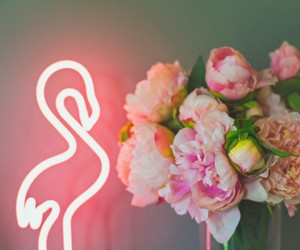 flamingo, flowers, and lights image