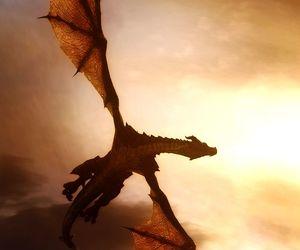 fire, dragón, and saphira image