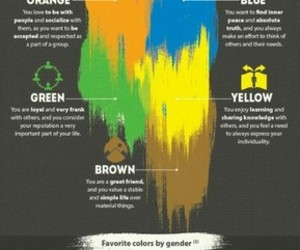 colors and facts image