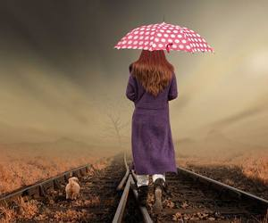 puppy, polka dot umbrella, and redhead train tracks image