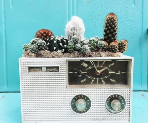 alternative, cactus, and home image