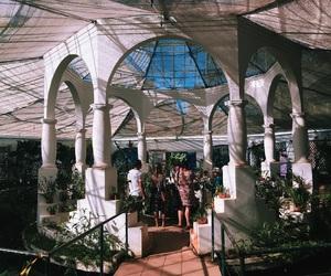 botanic garden, rio de janeiro, and botanical garden image