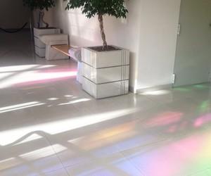 rainbow, aesthetic, and white image