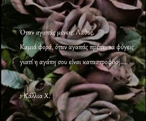 quotes, greek, and love image