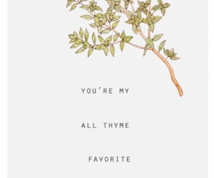 thyme, cute, and quotes image