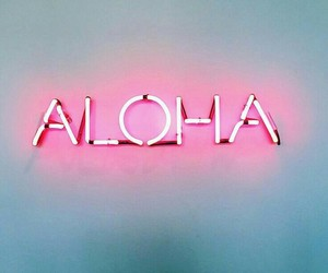 pink, neon, and wall image
