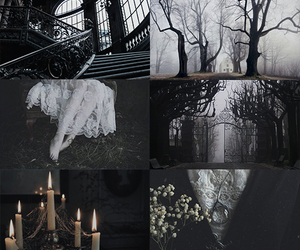 aesthetic, asylum, and coven image