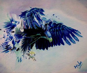 drawing, amazing, and bird image