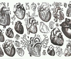 heart, hearts, and art image