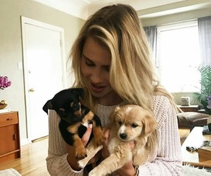 claire holt, beauty, and girl image