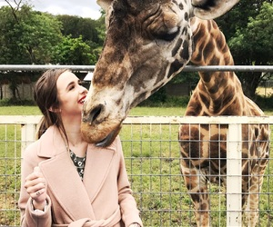 girl, acacia brinley, and animal image