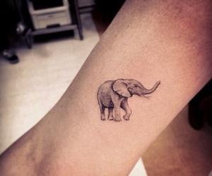 elephant, cute, and tattoo image