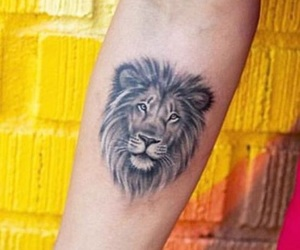 lion and tattoo image
