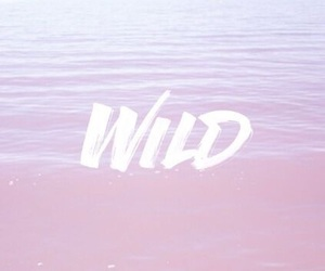 wallpaper, wild, and pink image