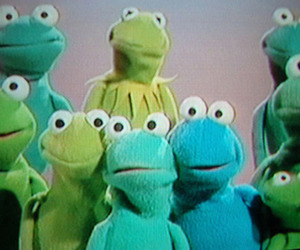 kermit, muppets, and frog image
