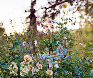 flowers, vintage, and green image