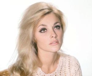 1960s, sixties, and vintage image