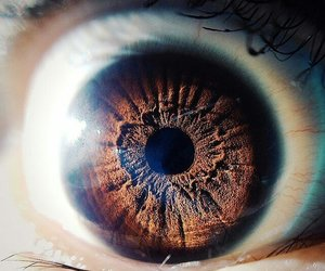 brown and eye image