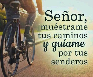 amor, bicicleta, and camino image