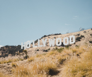 beautiful, hipster, and hollywood image