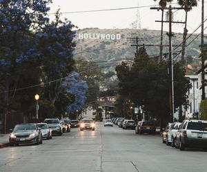 beautiful, california, and hollywood image