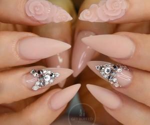 nails, pink, and roses image