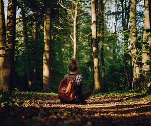 adventure, fjallraven kanken, and forest image